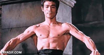 Enlace a Bruce Lee era hijo de un humano y de una ardilla voladora