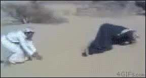 Enlace a El troll del desierto