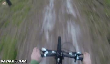 Enlace a El típico paseo en bicicleta tranquilo y relajante