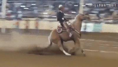 Enlace a A mí la equitación no me gusta porque los caballos no pueden derrap... no he dicho nada