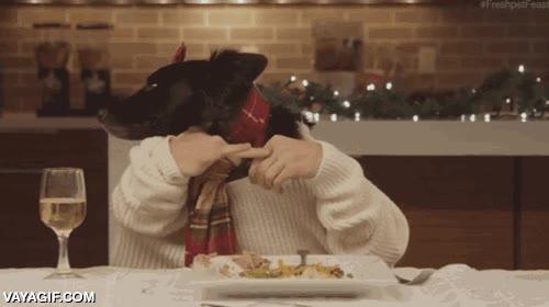 Enlace a Una cena familiar de perros
