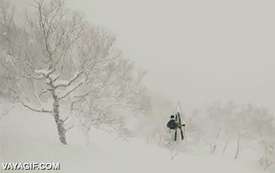 Enlace a El árbol más ninja de toda la montaña