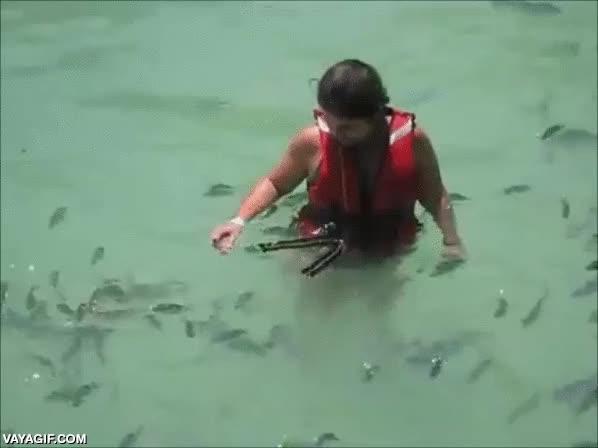 Enlace a Aquí tenéis el tráiler de la precuela de la peli Tiburón