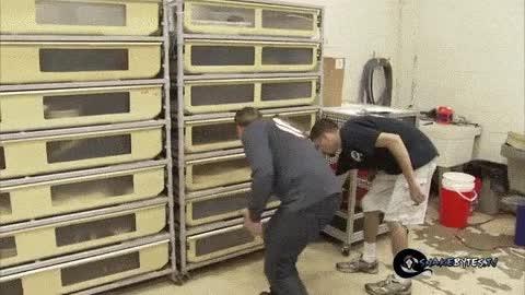 Enlace a La serpiente estaba atenta para atacar a sus captores en cuanto abrieran el cajón