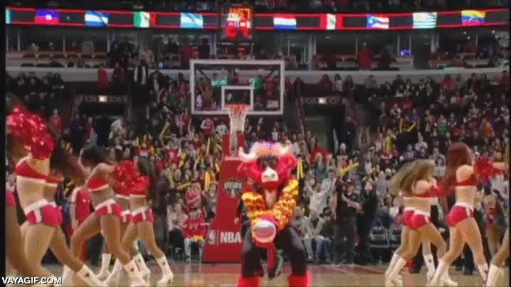 Enlace a La mascota de los Chicago Bulls es mejor tiradora a canasta que muchos jugadores de la NBA
