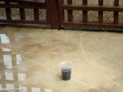 Enlace a Échale cloro en polvo a un vaso de Coca-Cola y apártate