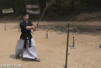 Enlace a Un auténtico maestro de la katana