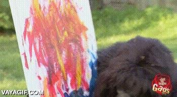Enlace a Nunca le enseñes a escribir a un gorila del zoo