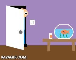Enlace a ¿Sabes lo que hace tu pez cuando tú no miras?