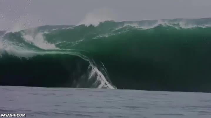 Enlace a Hacer surf con olas grandes no tiene precio