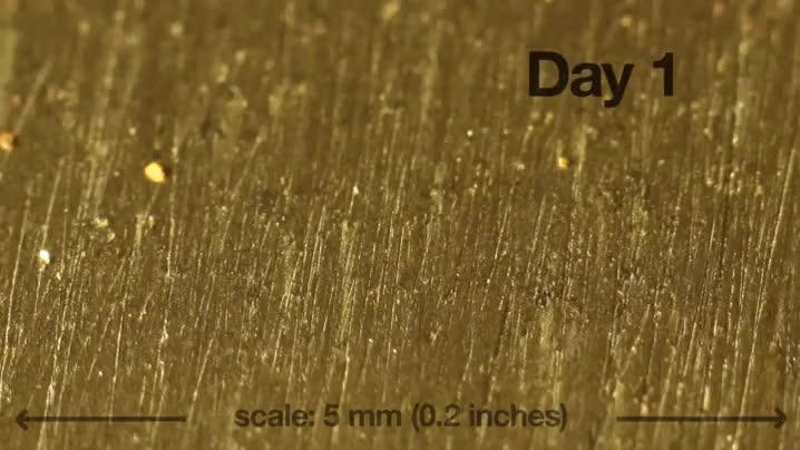 Enlace a Hasta la oxidación del acero es preciosa vista en time-lapse durante todo un mes