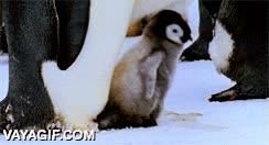 Enlace a ¿Un abrazo?