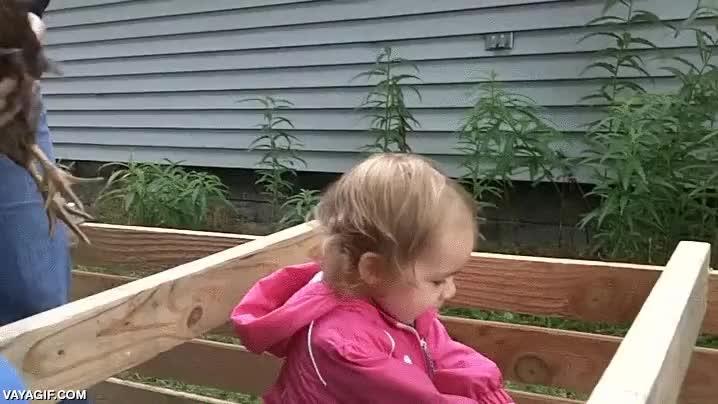 Enlace a La niña que abraza pollos se está empezando a hacer un hueco en Internet