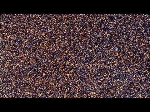 Enlace a Haciendo zoom out a la foto más reciente de la galaxia Andromeda, a 60,000 años luz de distancia