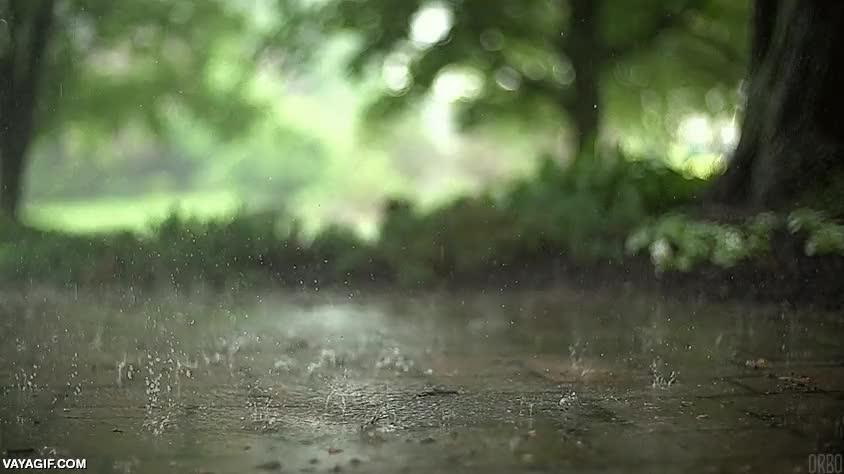 Enlace a En plena ola de calor, uno echa de menos la lluvia