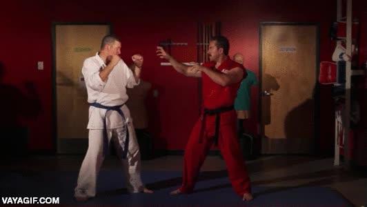 Enlace a Un maestro de las artes marciales sabe cuáles son los puntos débiles de su rival