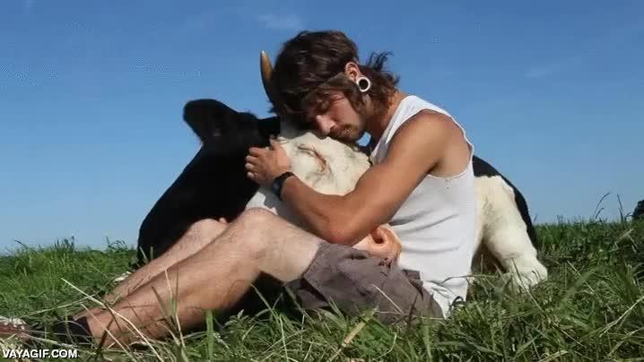 Enlace a El mejor amigo del hombre tal vez no sea solo el perro