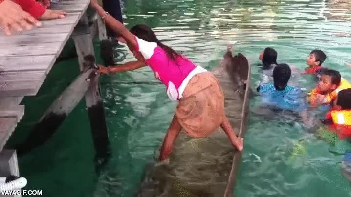 Enlace a Si algún día se te inunda la canoa, esta es la manera de vaciarla de forma rápida y eficaz