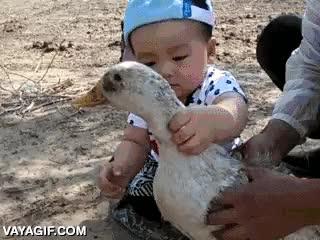 Enlace a No todos los niños nacen con compasión por los animales, algunos son caníbales en potencia
