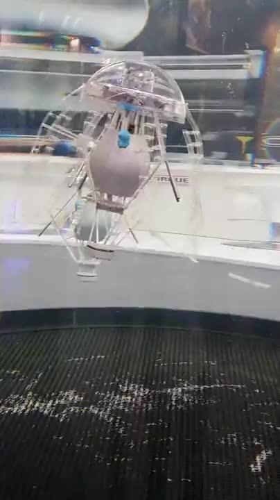 Enlace a El fin está cerca, medusas robotizadas