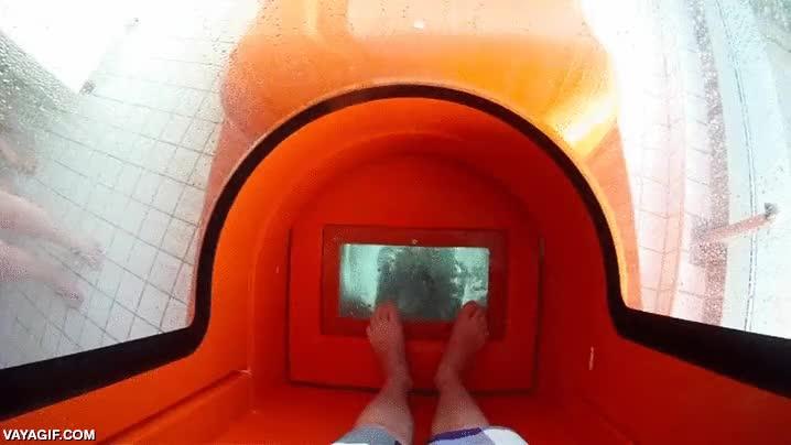 Enlace a ¿Ganas de parque acuático? ¿Te atreverías a tirarte por este tobogán casi vertical?