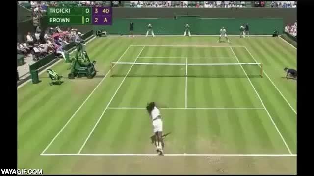 Enlace a Ojo al increíble puntazo de Dustin Brown en Wimbledon 2015