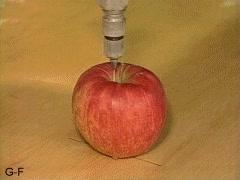 Enlace a Una manzana cortada por la mitad usando agua a presión, a mucha presión