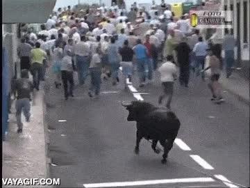 Enlace a En caso de ataque de toro, ya sabes qué has de hacer, hazte el muerto