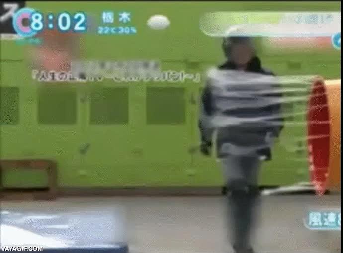 Enlace a El simulador de tifón inventado por los japoneses