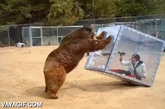 Enlace a El zoológico llevado a otro nivel