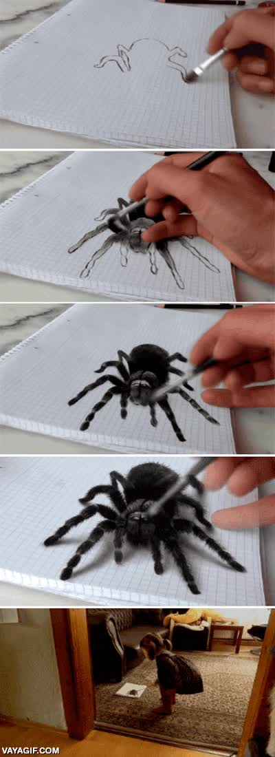 Enlace a Un dibujo tan realista de una araña que hace reaccionar así a una niña