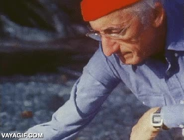 Enlace a Jacques Cousteau amaba a todos los animales marinos, ¡a todos!