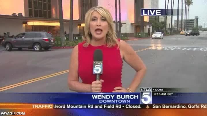 Enlace a Un espontáneo le pega el susto de su vida a esta reportera en directo