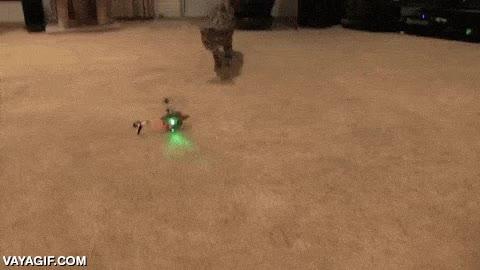 Enlace a El mejor sistema anti-drones, sin duda un gato