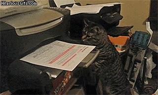 Enlace a ¡Tengo un fax urgente que enviar!