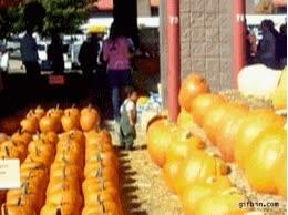 Enlace a Y así fue como Halloween se convirtió en su festividad más odiada