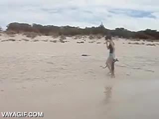 Enlace a Y así consiguieron que el cangurito se diera su primer bañito en la playa