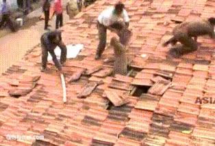 Enlace a Cuando de repente aparecen leopardos del tejado