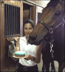 Enlace a Buena celebración de cumpleaños