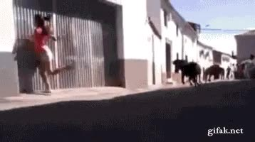 Enlace a Si vas a correr delante de vaquillas, siempre siempre siempre mira hacia delante