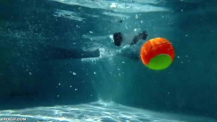 Enlace a Jugando a atrapar la bola es más espectacular si lo haces bajo el agua