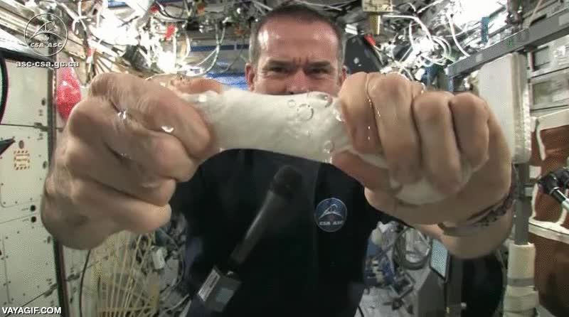 Enlace a Estrujando una bayeta húmeda en la estación espacial internacional