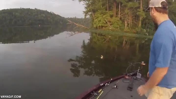 Enlace a Un pescador se encuentra en el agua un tipo de presa a la que no está acostumbrada