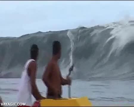Enlace a Los surfistas no solo han de temerle a los tiburones