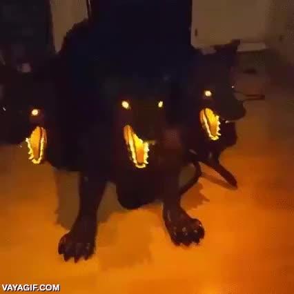Enlace a Algunos empiezan a preparar sus decoraciones de Halloween y van muy fuertes