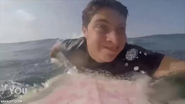 Enlace a Surfistas que desprenden compañerismo por cada poro