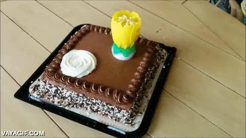 Enlace a Después de esta vela de pastel de cumpleaños, todas te parecerán cutres