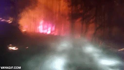 Enlace a ¿Alguna vez has conducido de noche por una carretera forestal atravesando un incendio?