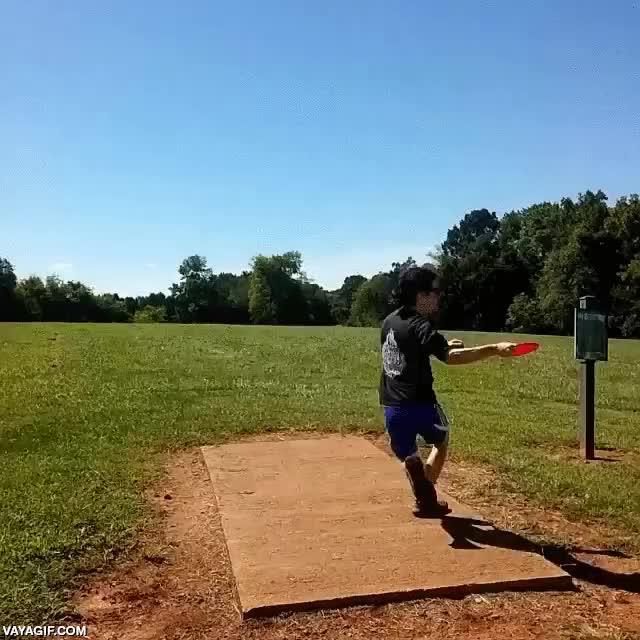 Enlace a Buen lanzamiento de frisbee... Sigue... Sigue... ¿Dónde caerá? ¡PAM!