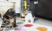 Enlace a El juego del Twister acaba en pelea entre estos dos pequeños